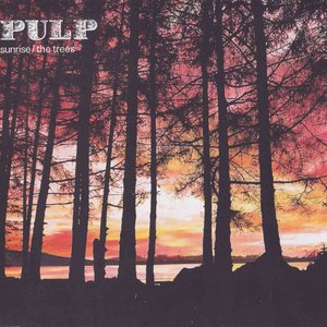 Image for 'Sunrise (Fat Truckers / Scott Free mix)'