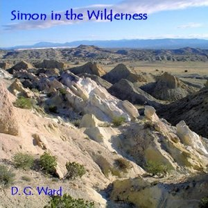 Image for 'Simon In the Wilderness'