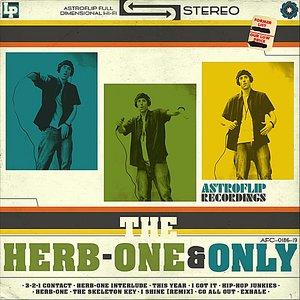Bild för 'The One & Only'