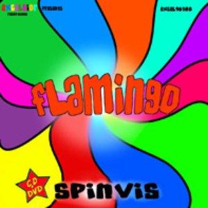 Image pour 'Flamingo'