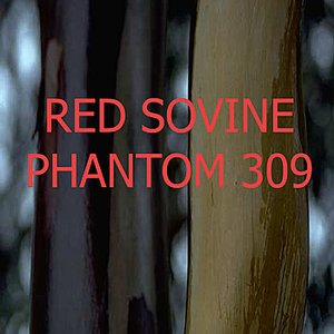 Image for 'Phantom 309'