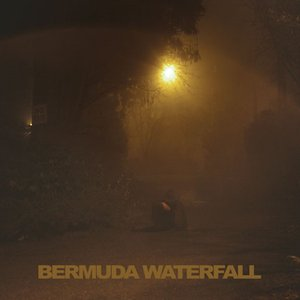 Image for 'Bermuda Waterfall'
