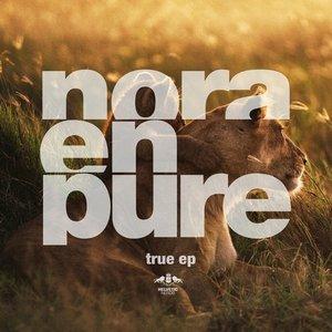 Image for 'True - Radio Mix'