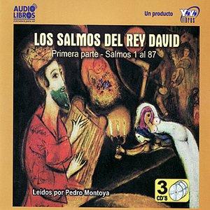 Image for 'Los Salmos Del Rey David - Primera parte - Salmos 1 al 87 (Unabridged)'