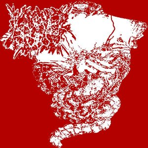 Image for 'Kadaver Torso'