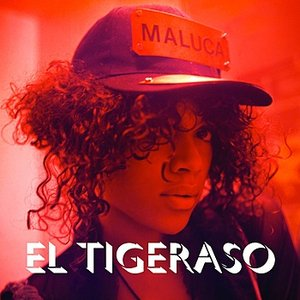 Bild für 'El Tigeraso (Sticky K Remix)'
