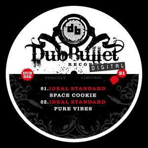 Image for 'Pure Vibes / Space Cookie'
