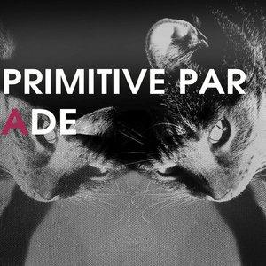 Image for 'Primitive Parade'