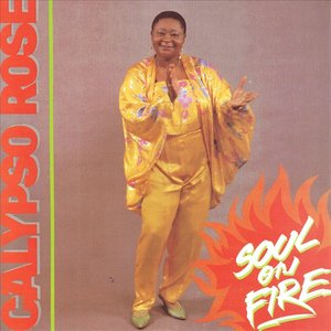 Image for 'Soul On Fire'