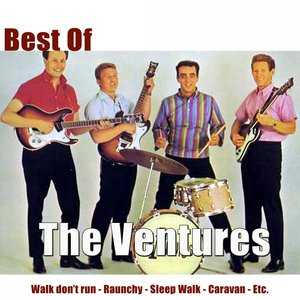 Image for 'Best of the Ventures'