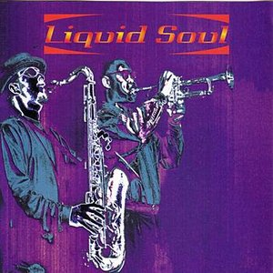 Image for 'Liquid Soul'