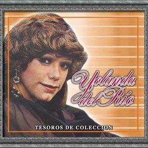 Image for 'Tesoros De Coleccion - Yolanda Del Rio'