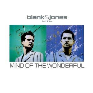 Imagem de 'mind of the wonderful (mark norman dub remix)'