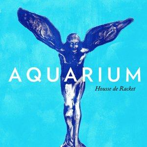 Immagine per 'Aquarium (Rex The Triangle Remix)'