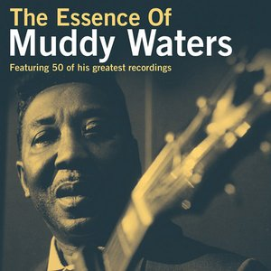 Image for 'The Essence Of Muddy Waters'