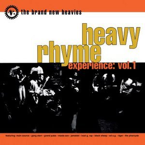 Image for 'Heavy Rhyme Experience: vol.1'