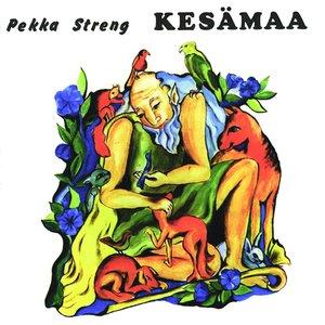 Image for 'Kesämaa'