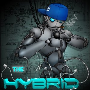 Image for 'The Hybrid'