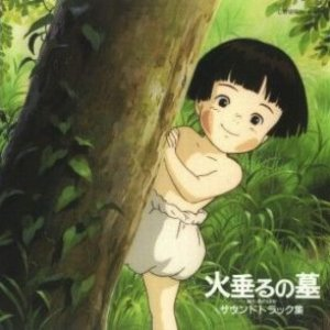 Immagine per 'Grave of the Fireflies'