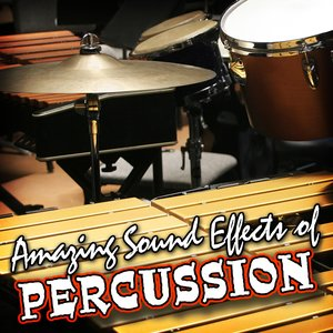 Image for 'Amazing Sound Effects of Percussion'