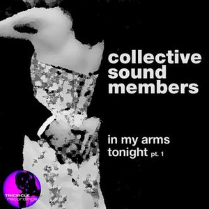 Image for 'Collective Sound Members'