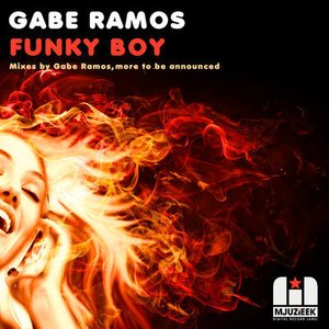 Image for 'Funky Boy (Raul Cremona Remix)'