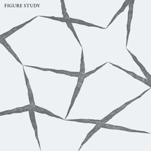 Image for 'Figure Study'