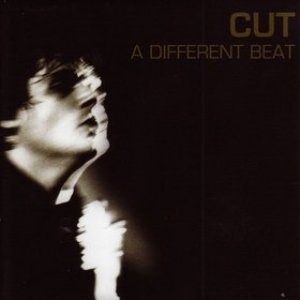 Image for 'A Different Beat'