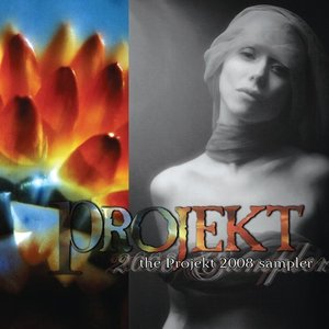 Image pour 'The Projekt 2008 Sampler'