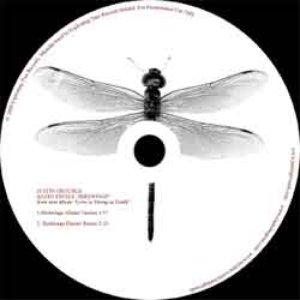Image for 'Birdwings single'