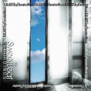 Image for 'Sky Elevator Music'