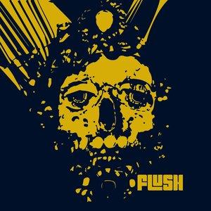Image for 'Flush'