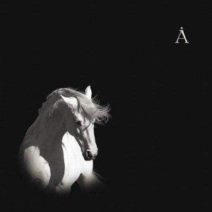 Imagem de 'Лошадь Белая'