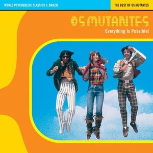 Bild för 'Everything is Possible: The Best of Os Mutantes'