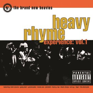 Image for 'Heavy Rhyme Experience: Vol. 1'