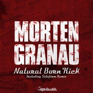 Image for 'Natural Born Kick'