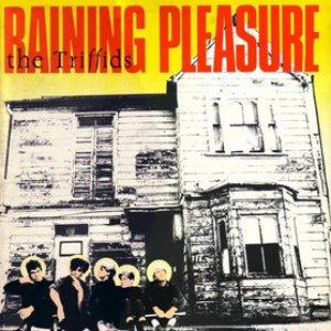 Image for 'Raining Pleasure'
