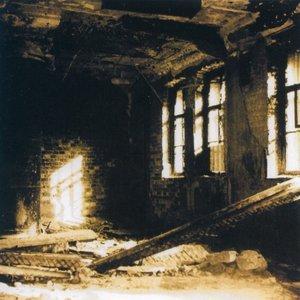 Image for 'Necrosphere'