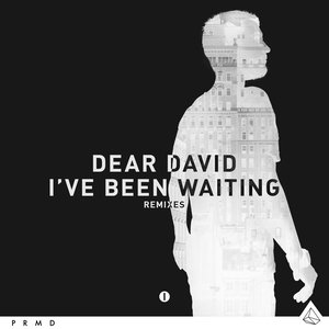 Image for 'I've Been Waiting (Remixes)'