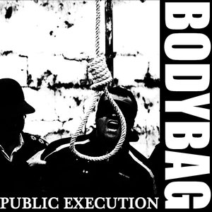 Image for 'Public Execution'