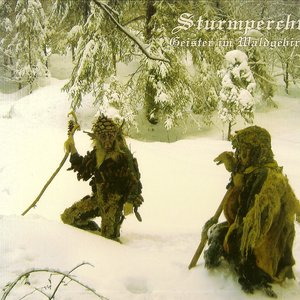 Imagem de 'Geister im Waldgebirg'