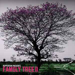 Image for 'Perspectiv Family Tree Compilation'