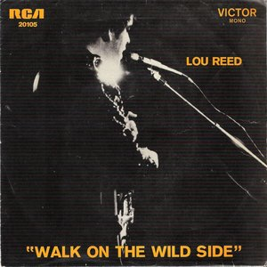 Image pour 'Walk On The Wild Side'