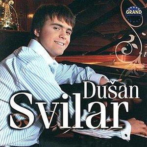 Image for 'Dusan Svilar'