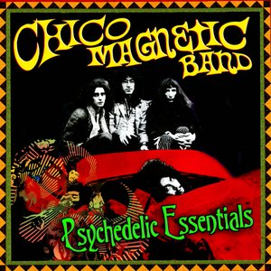 Image pour 'Psychedelic Essentials'