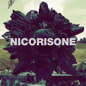 Image for 'Nicorisone'