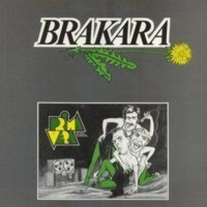 Image for 'Brakara'