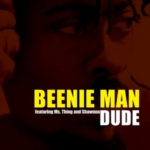Image for 'Dude (remix)'