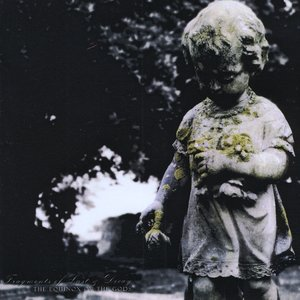 Image for 'No Life'