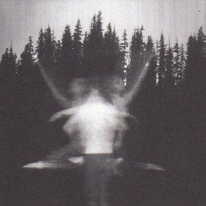 Image for 'Light Like'